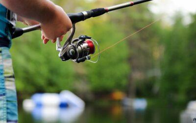 Billig fiskestang – helt essentiel til fisketuren